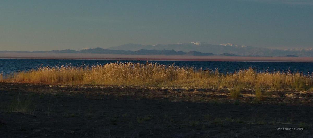 Монголия Котловина больших озер